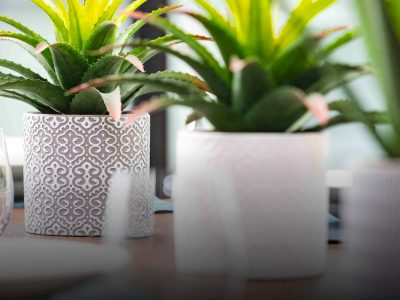 EDEN-ceramic-planters-web